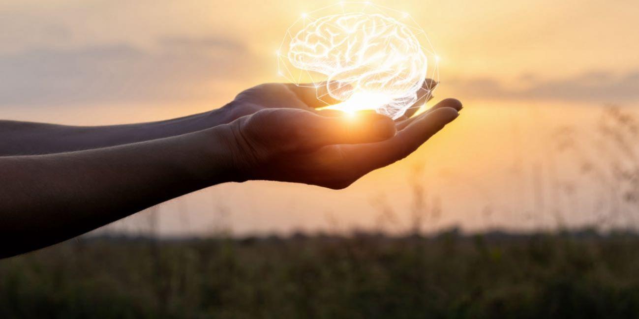 Programação Neuro Linguística E Mindfulness